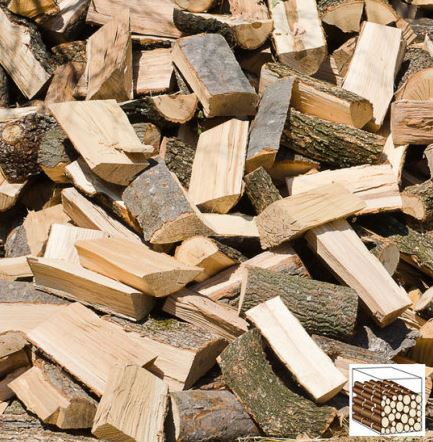 Boisdollainville.com, livraison bois de chauffage Essonne 91 livraison bois de chauffage (28, 77, 78, 91, 92, 94) Élagage, débardage, abattage (28, 77, 78, 91, 92, 94). Bois dollainville