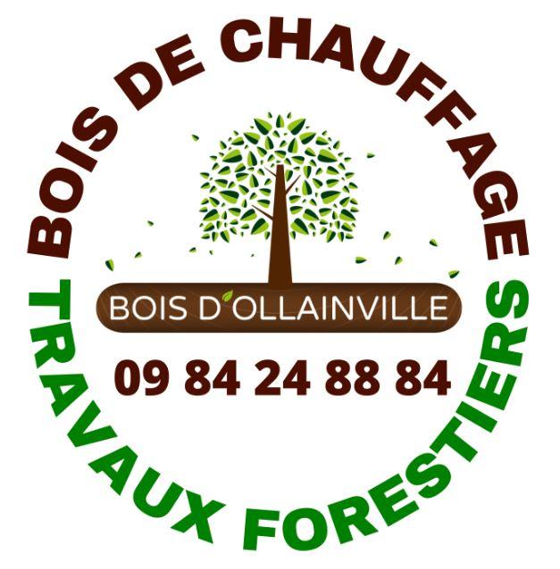 Bois D'Ollainville Logo
